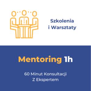 Mentoring (Konsultacja) w Formie Warsztatu (skype/zoom).