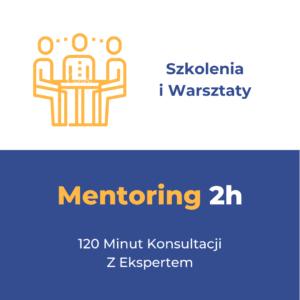 Mentoring (Konsultacja) w Formie Warsztatu (skype/zoom)